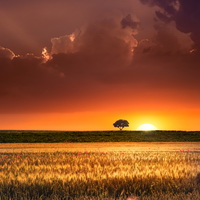 Sunset in the agricultural areas